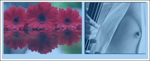 beauté-privée,comme un débutant, françoise, montana 1910-1920, 'anneau sacré, ltc poésie : le serment du silence, jean dorval pour ltc poésie, ltc poésie, jean dorval, poète lorrain, ltc poésie : hommage à l'amitié et à la fraternité, le passage, jean bereski-laurent, jd en dédicace, le re-retour !, ltc poésie : carte blanche à jean dorval, metz : un carnet de voyage marocain signé jean dorval, l., l'extase d'un baiser, françois tristan l'hermite, les bienfaits du baiser, songer, vivre et croire, au carrefour des sens, la colombe et le faune, défiition marron, le photographe, christian hoffmann, metz - médiathèque du sablon : les meilleurs vieux à l'honneur, tania mouraud, une rétrospective, du 4 mars au 5 octobre 2015, au centre pompidou-metz, by jd, bientôt... très bientôt... un reportage sur la rétrospective sur, et un interview de tania, signés jd, le programme du centre pompidou-metz, 2015, vitrine éphémère, collectif d'artistes, artisans, créatifs, et passionnés, vous invite, vernissage, vendredi 03 octobre 2014, à partir de 17h00, la magicienne susanna fritscher fait des bulles de cristal, au cpm, un été au cpm