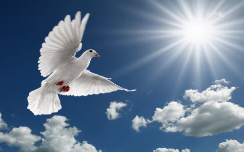 l'avent,a propos de la très sainte-trinité,la pentecôte,ascension,24h de vie 2014,musique universelle,musique de paix : soutenez les petits chanteurs,à la croix de bois,message du pape françois pour la journée mondiale de prière pour,le pape françois : le retour de la doctrine sociale de l'église,king's college choir - thine be the glory (haendel),le mois de mai,c'est le mois dédié à la vierge marie,la place saint-pierre de rome,était noire de monde dimanche 27 avril pour la canonisation,de jean paul ii et jean xxiii,le pape françois,la croix. »,joyeuses pâques,la semaine saitne,apothéose du carÊme : le cheminement de la semaine sainte,vers pâques,pâques,la semaine sainte,le chemin de croix,la passion,la croix,la résurrection,seigneur,notre père,jésus,jésus-christ,la vierge marie,saint-joseph,la trinité,jean dorval,jean dorval pour ltc religion,catholicisme,catholicisme éclairé,ltc religion,france,catholique et français toujours,carême 2014,conférences de carême,cathédrales de metz,moselle,lorraine,éloges de l'épreuve,retraite dans la ville,sainte-thérèse de l'enfant jésus