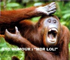 logo ltc humour.jpg