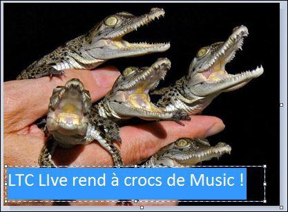 ltc live a crocs de music.JPG