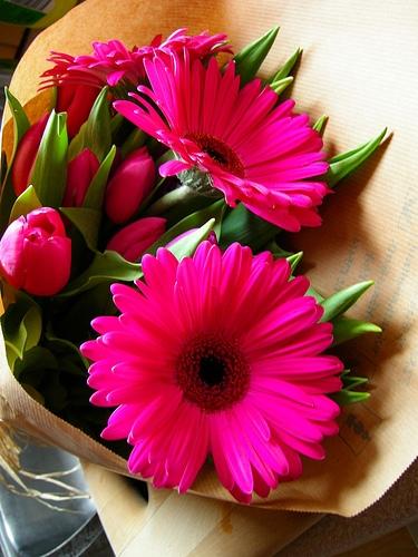 c'est le jour des fleurs sur ltc,gerberas et tulipes roses de rigueur,anna des naudin pour ltc,centre pompidou-metz,metz,moselle,lorraine,bouquet de fleurs,adn