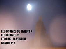 ltc live brumes nuit 1.jpg