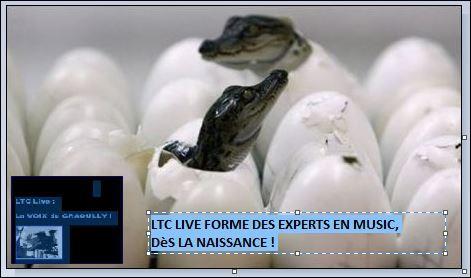 simple minds,sex pistols, heart, icehouse, the cult, the church, killing joke, depeche mode, tubeway army gary numan, taxi girl, jean dorval pour ltc live, la communauté d'ltc live, silverstein, get up my shoes, new order, simple minds, cocteau twins, ltc live : la music est le miel de l'âme !, jean dorval, the smiths, ltc live : l'instant love-love, omd, absolute ltc@live, ltc live : le micro-climat musical !, the human league, ltc live : le watt-peak musical, hommage pour les 25 ans de la disparition de gainsbarre, ltc live : la music box !, ltc live : social music player, les zizikales d'ltc live : live music only !, level 42, 1995, t-vice, ltc live : le média rebelle qui dé-note !, bomb factory, ltc live prend le rap à la source, absolute ltc@live : pop (corn) rock time, ltc live : le mur du song !, inxs, the cranberries, laibach, delegation le groupe, diana ross, george benson, the pointer sisters, jump (for my love), barry white, change, can you feel it, echo le groupe catholique, helena house