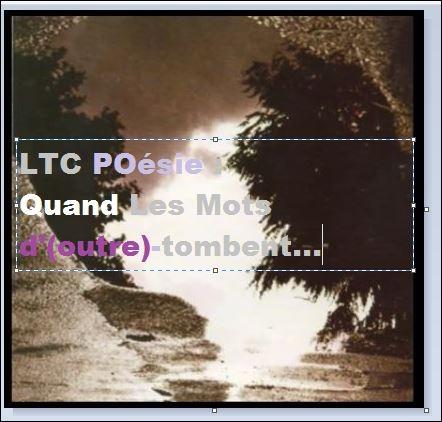 ltc poésie quand les mots d'outretombent.JPG