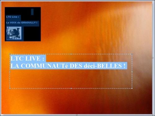 ltc live communauté décibelles A.JPG