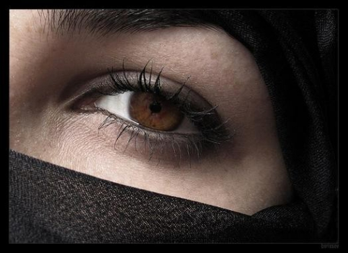 « le chant de sanaa. »,poésie,inspiré de la poésie humaynî du yémen,mais en vers libres,tihāma,yémen,femme yéménite,évidence,la rose mauve,une hirondelle fait mon printemps,melin de saint-gelais,poésie renaissance,renaissance,joachim du bellay,danse avec moi cette nuit,ltc,la tour camoufle,jean dorval,jean dorval pour ltc,coupe du monde de football,amour,romantisme,centre pompidou-metz