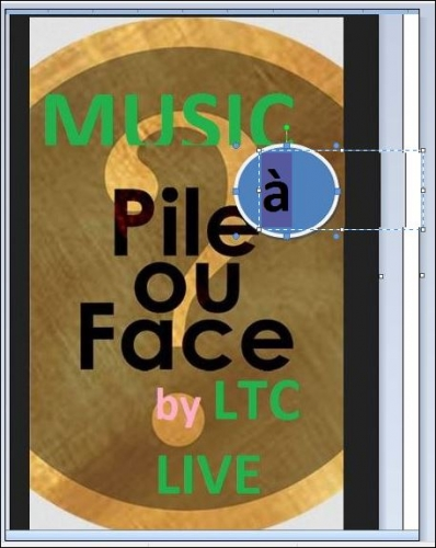 ltc live pile ou face D.JPG