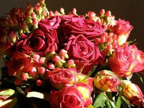 pour la saint-valentin ltc offre quelques roses à ses lectrices,saint-valentin,amour,un homme et une femme,ltc