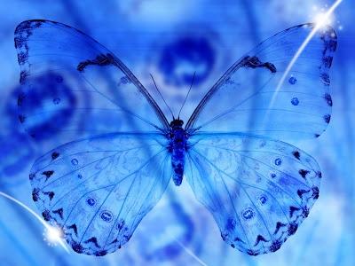 nuit bleue d'avril,le tombeau des insolents,un papillon sur l'épaule,françoise,montana 1910-1920,'anneau sacré,ltc poésie : le serment du silence,jean dorval pour ltc poésie,ltc poésie,jean dorval,poète lorrain,ltc poésie : hommage à l'amitié et à la fraternité,le passage,jean bereski-laurent,jd en dédicace,le re-retour !,ltc poésie : carte blanche à jean dorval,metz : un carnet de voyage marocain signé jean dorval,l.,l'extase d'un baiser,françois tristan l'hermite,les bienfaits du baiser,songer,vivre et croire,au carrefour des sens,la colombe et le faune,défiition marron,le photographe,christian hoffmann,metz - médiathèque du sablon : les meilleurs vieux à l'honneur,tania mouraud,une rétrospective,du 4 mars au 5 octobre 2015,au centre pompidou-metz,by jd,bientôt... très bientôt... un reportage sur la rétrospective sur,et un interview de tania,signés jd,le programme du centre pompidou-metz,2015,vitrine éphémère,collectif d'artistes,artisans,créatifs,et passionnés,vous invite,vernissage,vendredi 03 octobre 2014,à partir de 17h00,la magicienne susanna fritscher fait des bulles de cristal