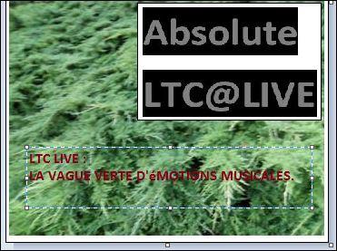 ltc live vert 2.JPG