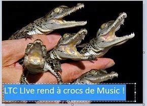 ltc live a crocs.jpg