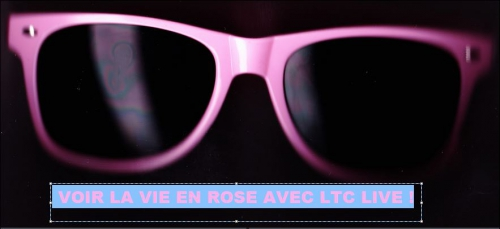 logo ltc live la vie en rose.JPG