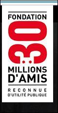 30millionsd'amis.JPG
