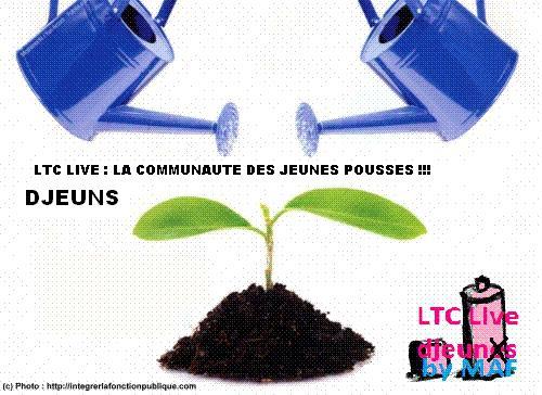 logo ltc live djeunes.JPG