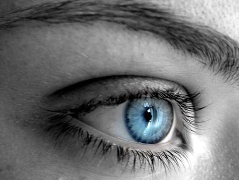 la dame bleue,romantisme,fleur bleue,poésie,lorraine,moselle,metz,centre pompidou-metz,jean dorval pour ltc