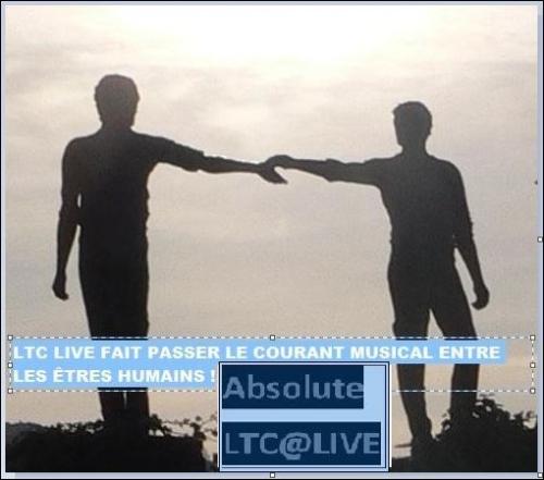 ltc live contact 2.JPG