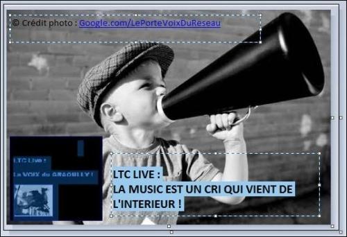 ltc live cri.jpg