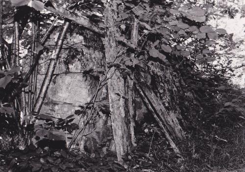 """centre pompidou-metz (cpm) organise du 26 février au 9 juin 2014, à son tour, une exposition sur les paparazzis, dans sa galerie 3, baptisée """"paparazzi ! photographes, stars et artistes."""", l'esthétique paparazzi, viktoria binschtok, tazio secchiaroli, ron galella, pascal rostain & bruno mouron, william klein, gerhard richter, richard avedon, raymond depardon, yves klein, cindy sherman, malachi farrell, alison jackson, kathrin günter, andy warhol, le commissaire de l'expo, clément chéroux, les paparazzis, une expo sur les paparazzis, xpo, exposition, regards sur l'école de paris, au musée de la cour d'or à metz, claire garnier, co-commissaire d'exposition, interview, pleins """"phares"""" sur le cpm !, centre pompidou-metz, phares, pablo picasso, jean dorval, jean dorval pour ltc arts, juan miró, yan pai-ming, fernand léger,expo photos by jd """"deep nature"""""""