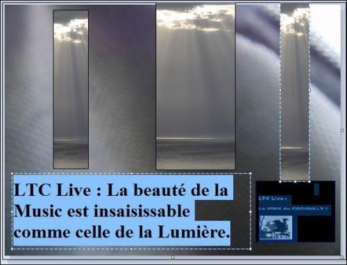 ltc live lumière musique.JPG