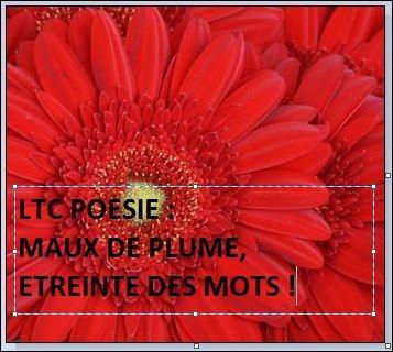 """l'invitation au voyage,charles baudelaire,jean dorval en dédicace,le semeur de sentiments,le temps n'a plus d'importance,une rencontre d'edilivre,avec jean dorval,auteur du recueil de poésie : """"le semeur de sentiments."""",ltc poésie annonce : hommage parisien au poète paul verlaine,les amis de verlian,association,la maison de verlaine,metz,sara-bande marocaine,ltc poésie rend hommage à,charles marie rené leconte de lisle,sara-fleur,prélude à sara,le serment à sara,un baiser pour sara,jean dorval,sara ou les nuits d'été,jean dorval pour ltc poésie,jean dorval poète lorrain,poésie lorraine,poésie,cupidon me sert le thé,amour,romantisme,centre pompidou-metz,moselle,lorraine,france,ue,union européenne,europe,art écrit,écriture"""