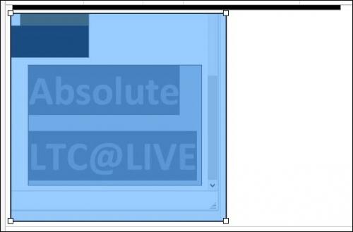 ltc live bs gris bis.JPG