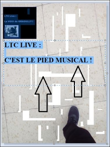 ltc live c'est le pied musical OK.JPG
