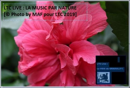 ltc nature 5.JPG