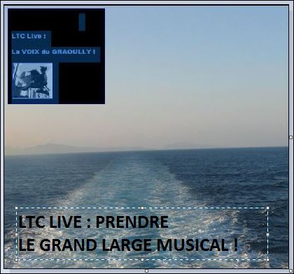 ltc live grand large musical 1.JPG