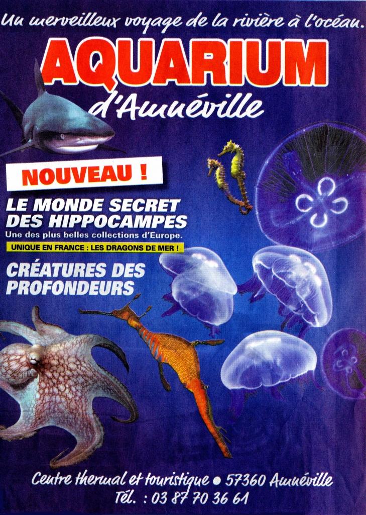 aquarium d amn 233 ville ltc la tour camoufle quot la lorraine au coeur du monde