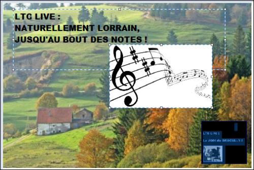 logo ltc live nature lorraine notes music ok.PNG