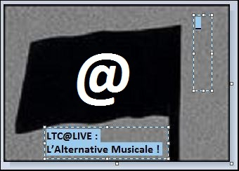 ltc live l'alternative musicale 3.JPG