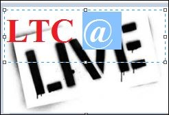 ltc live @.JPG