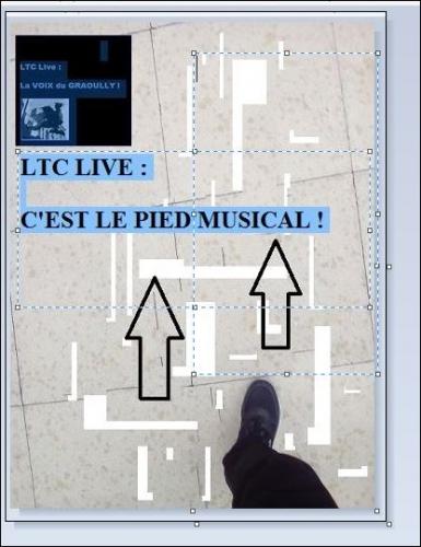 ltc live c'est le pied musical OK 2.JPG