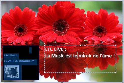 Ltc live la music est le miroir de l 39 me ltc la for Le miroir de l ame