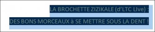 """the bloc party,LA BROCHETTE MUZIKALE (d'LTC LIve) reçoit """"THE BLOC PARTY."""","""