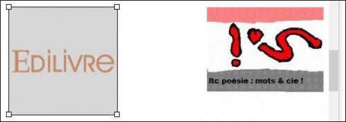 vjing,william duong,illustrateur,hôtel kyriad metz centre,hôtel ibis styles metz centre gare,ltc poésie présente : « echo-ésie »,un recueil de poésie signé jacques nimsgerns et jean dorval,en elle seule,jean dorval poète lorrain,eu,feu sacré,orage,feu d'amour,jean dorval pour ltc,jean dorval pour ltc poésie,ltc,la tour camoufle,elle et lui : ils!,jean dorval poète,poète lorrain,poèsie lorraine,centre pompidou-metz,metz,moselle,lorraine,france,europe,écriture,ue,union européenne,arts,art moderne,le feu sacré,strasbourg,nancy,paris,lourdes,en direct,amour,romantisme,fleur bleue