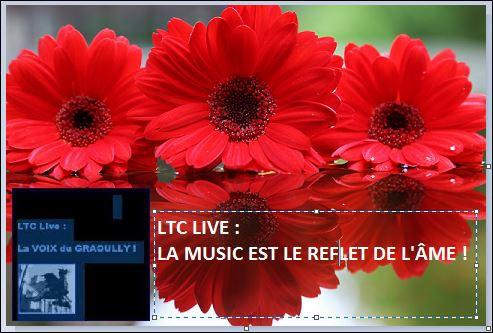ltc live la music est le reflet de l'âme.JPG