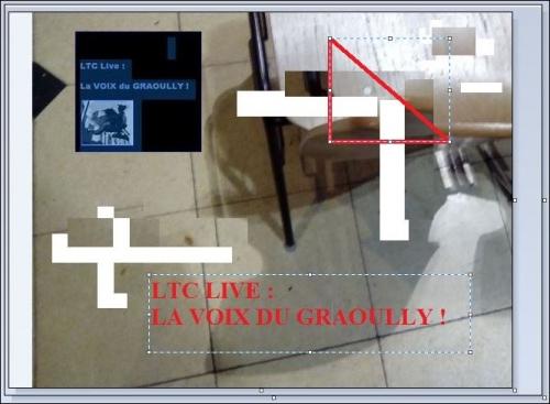 ltc live chaise 3.JPG