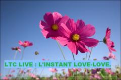 ltc live l'instant lovelove.PNG