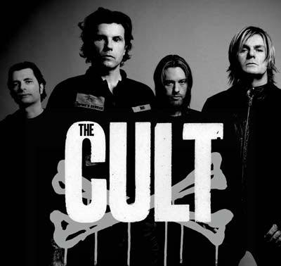 The Cult,Wild Flower,